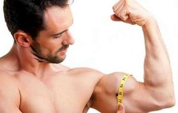 How to Build Muscle mass Steadily