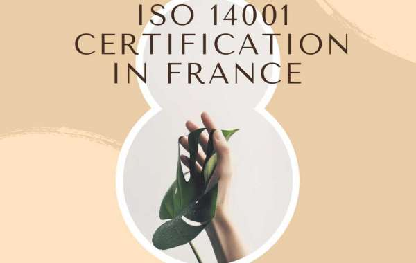 How ISO 14001 implementation in France helps reduce energy consumption