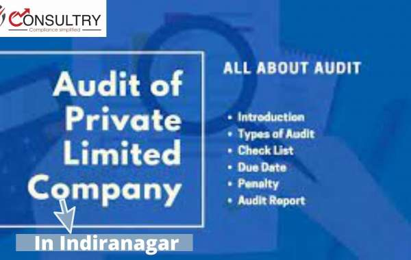 MCA Guidelines for Accounting and Auditing for Private Limited Companies in Indiranagar