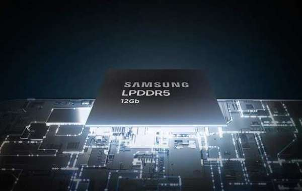 What is LPDDR5?