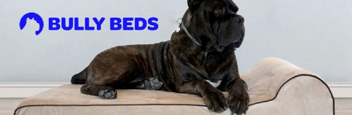 Bully Beds Cover Image