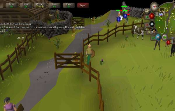 A Guide for OSRS Raids